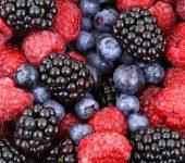 Кои горски плодове са подходящи за режима