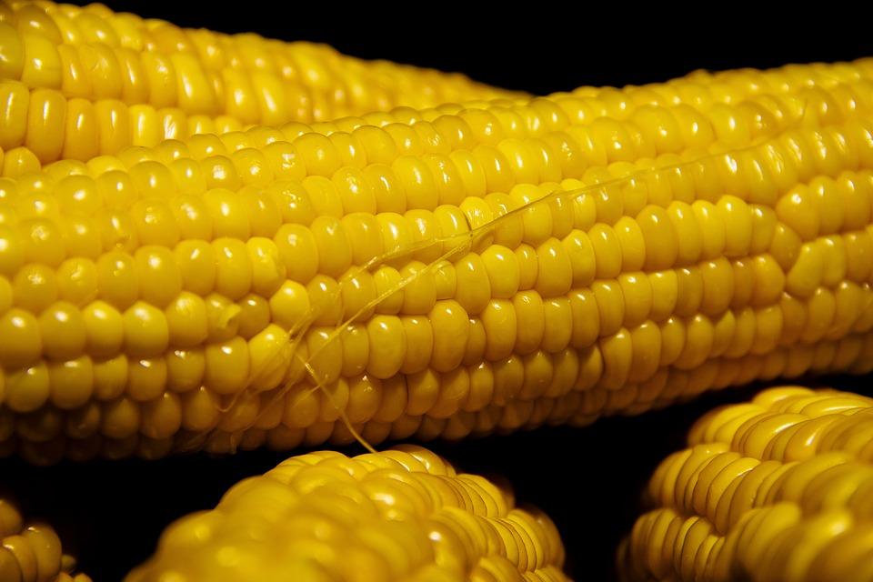 Вкусният свят на царевицата